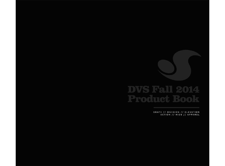 DVS-top