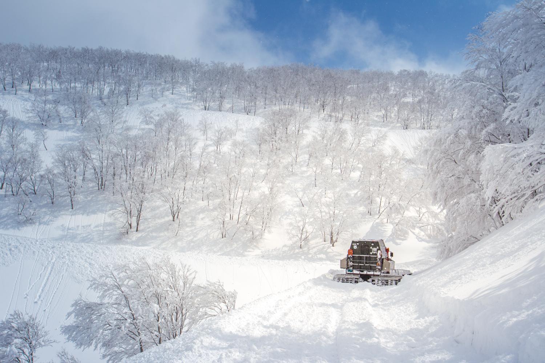 手つかずの大自然の中でのツアー。しかもアクセスはキャットと呼ばれる雪上車。ハイクなしでパウダーを滑り放題という、夢のような世界が広がる