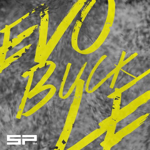 evo_buckle-1