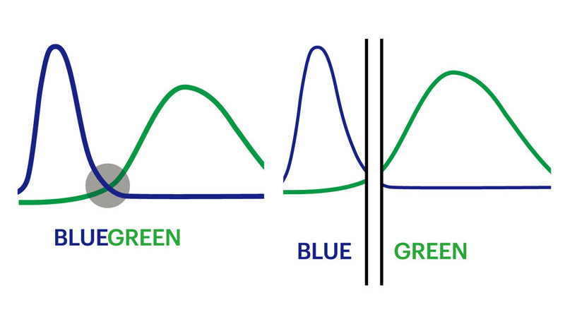 光の波長をコントロール たとえば青と緑の2色の波長が交わる曖昧な色をカット。見えづらい色をなくすことで自然で鮮やかな視界を確保する
