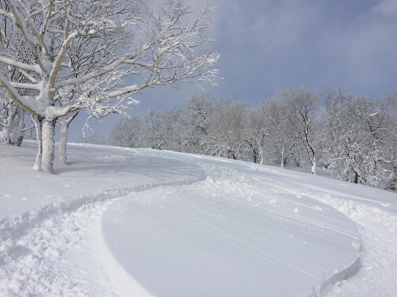 これを見てもらえば名寄の極上な雪質が伝わるだろう