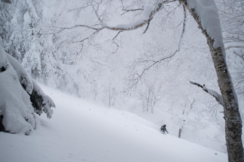 自然の中に入り込める画が撮れるのはカメラマンのおかげだ。上田ユキエ Photo: Takahiro Nakanishi