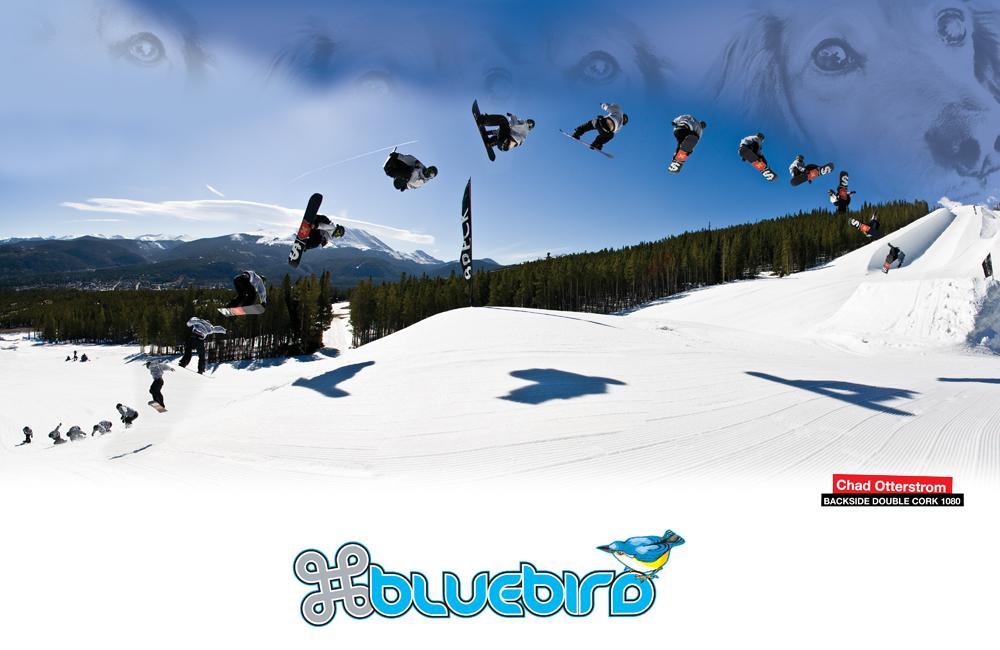 BLUEBIRDブランドルームイメージ画像-2