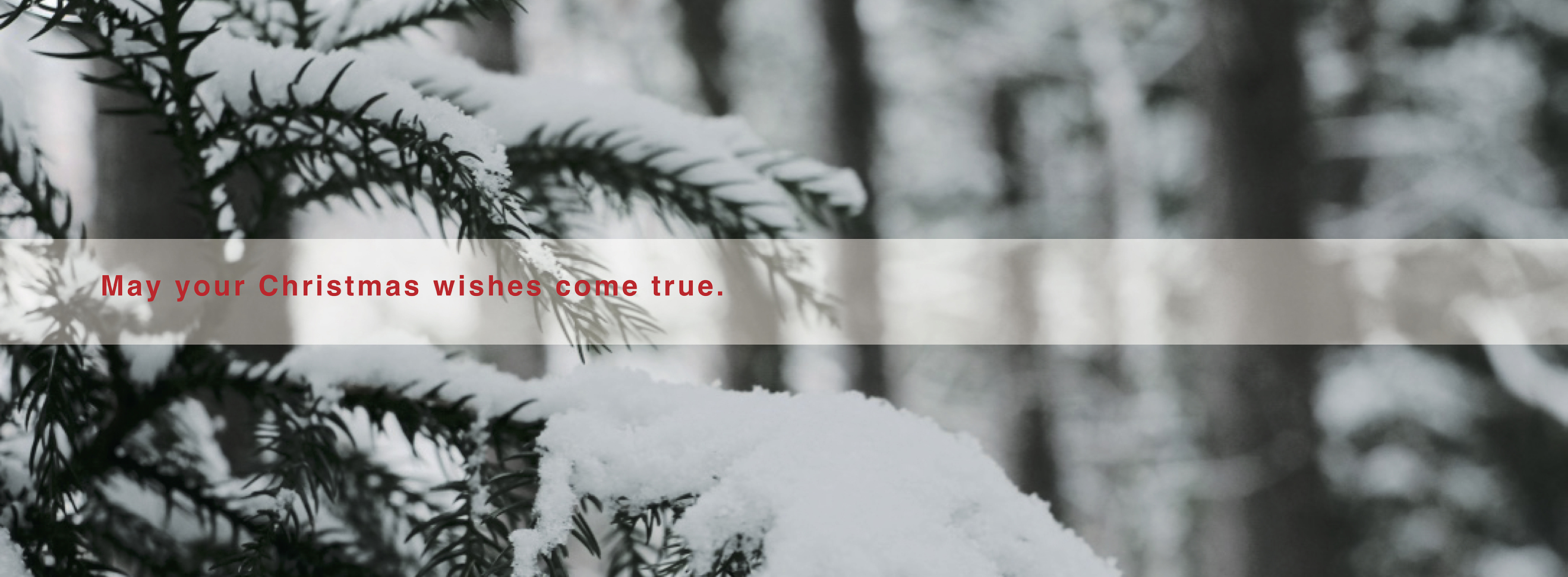 Christmas_banner_1