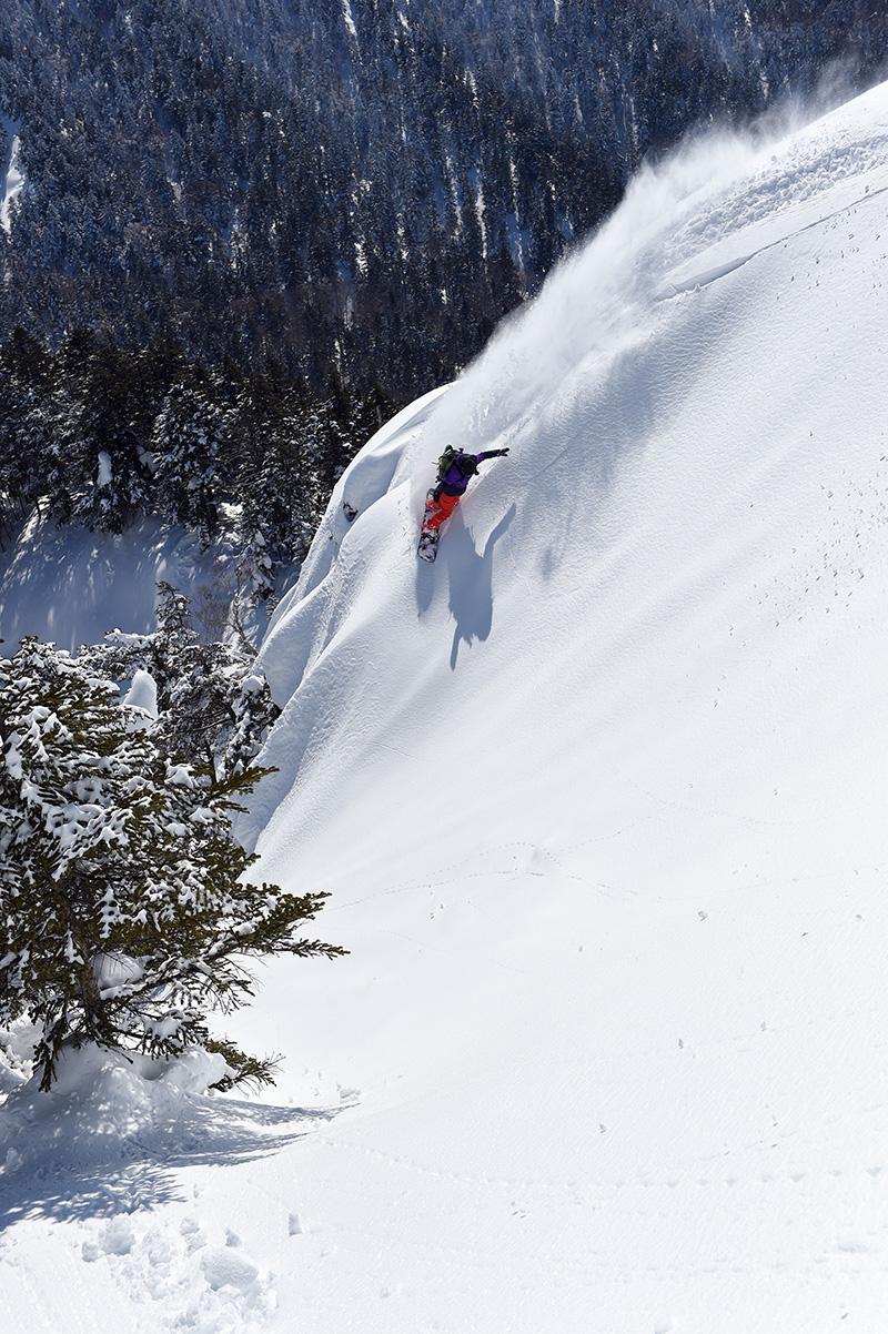 先シーズンから狙っていた南斜面。朝一の冷えで雪は引き締まっていた Photo: Yuji Kaneko